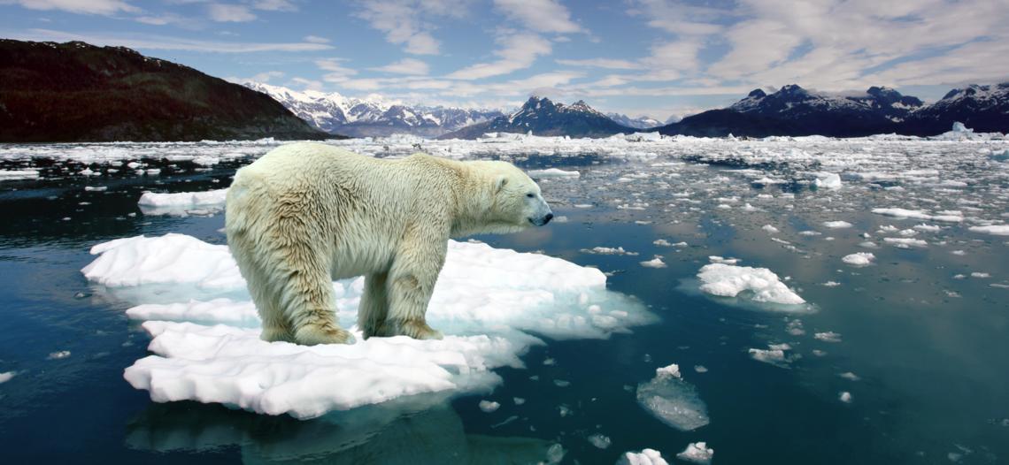 Cambio climático empeora y las soluciones son bajas: ONU