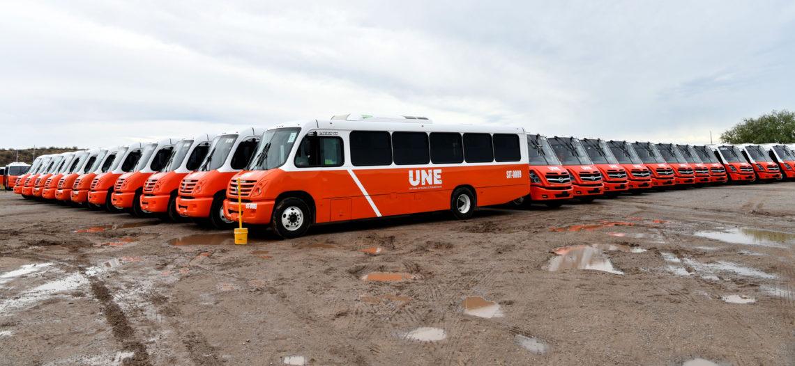 Llegan 52 unidades nuevas más para el servicio de Transporte Público
