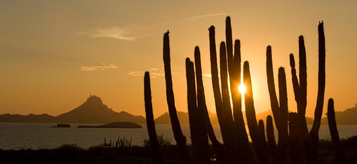 Muestran destinos de Sonora en Mérida, Yucatán