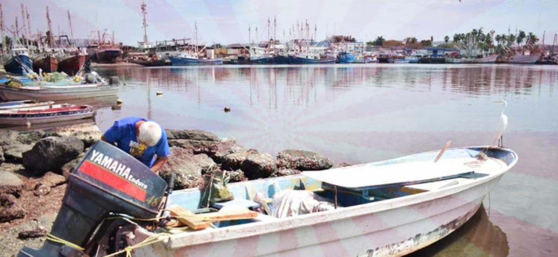 Duro golpe a sector pesquero Mexicano