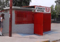 Asigna Cobach plazas académicas vacantes para el Semestre 2020-2021