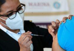 Proponen consagrar en Constitución derecho a vacunas y medicinas