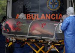 México supera las 263 mil muertes por covid; reportan 7 mil 504 contagios más
